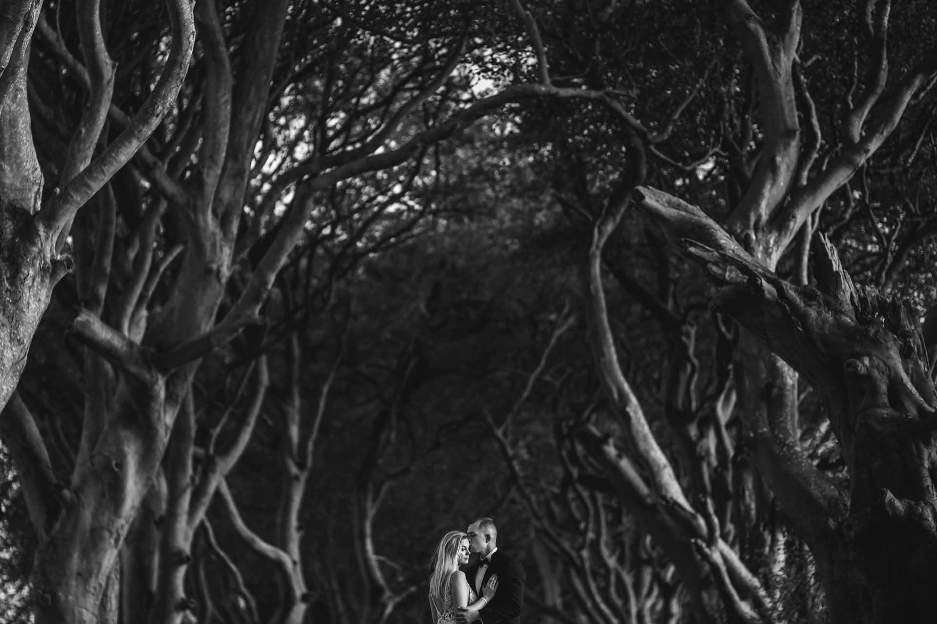 Plener ślubny w Irlandii